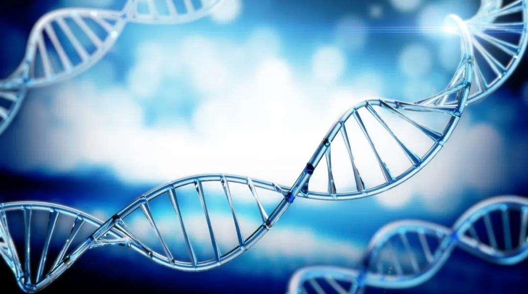 影响孩子身高因素遗传