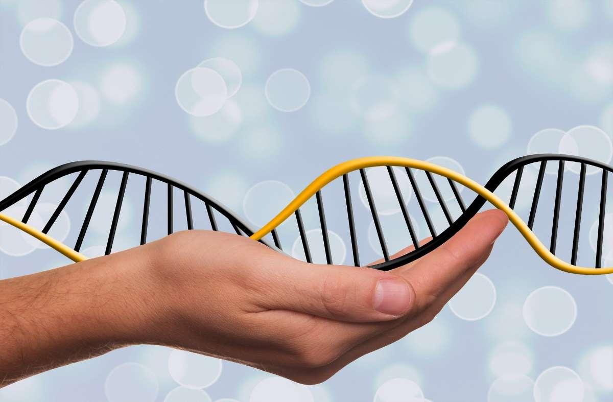先天遗传、代谢病:视情况给予特殊治疗。甲低型、垂体型侏儒、先天性卵巢发育不全,小于胎龄,特发性矮小等,应对症治疗。
