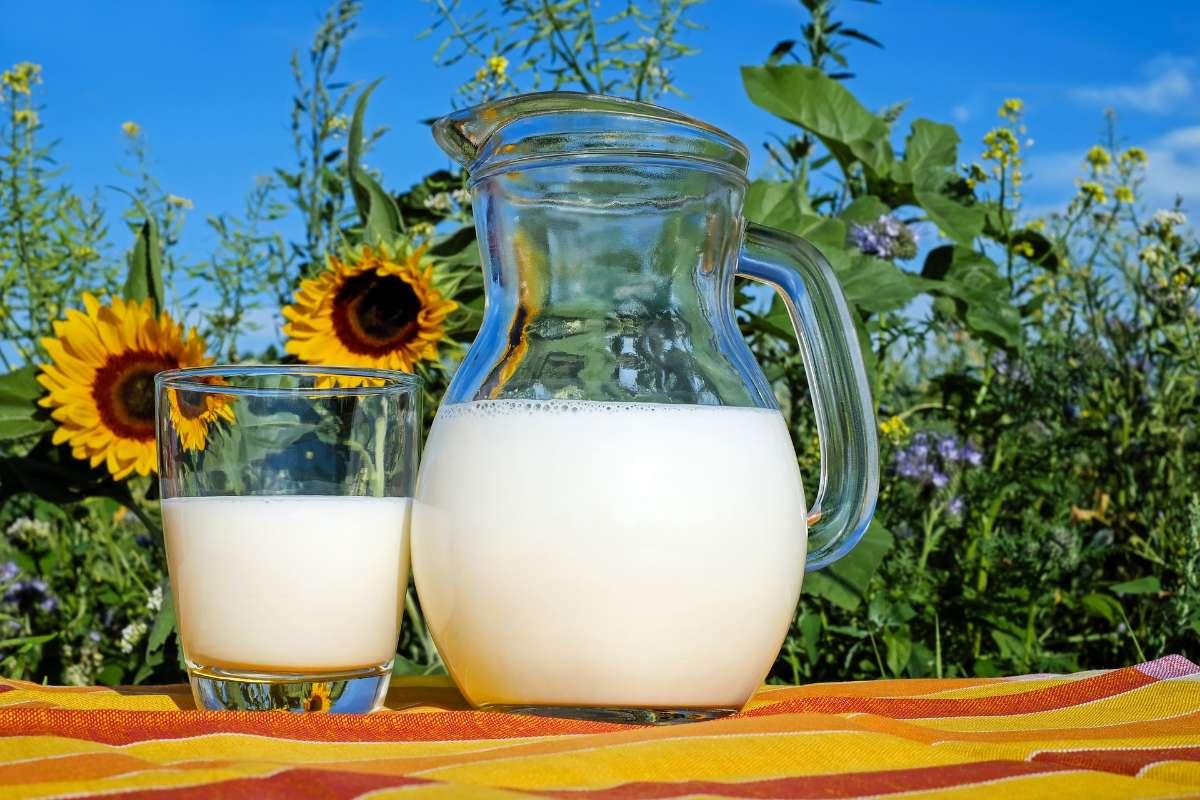 长高少不了钙,牛奶每天必不可少