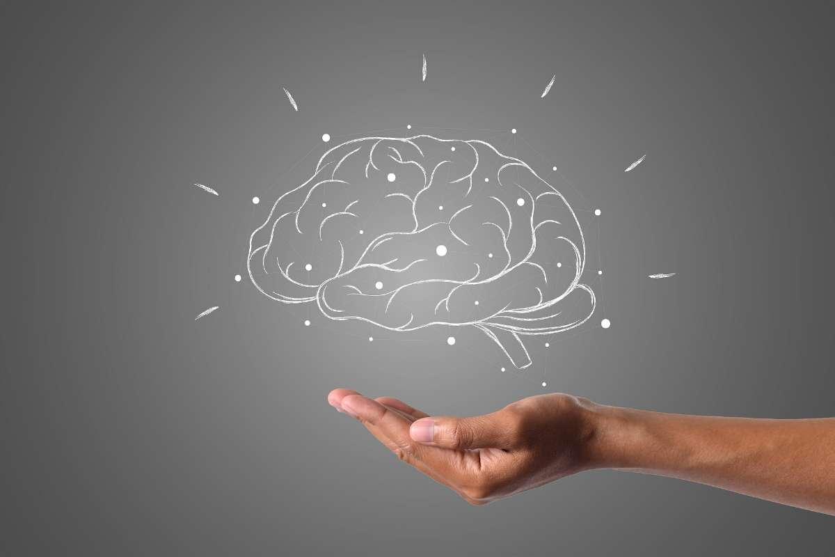 神经系统的生理因素和大脑的异常
