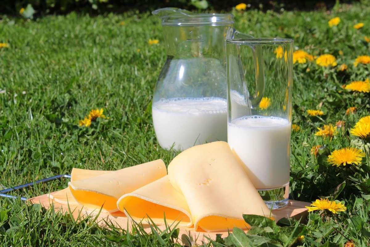 摄入足量的钙和维生素D有助于长高