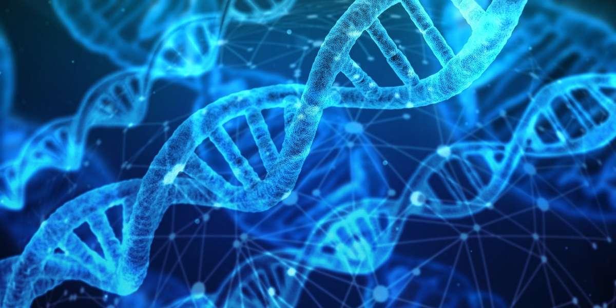 先天体质缺陷可能由染色体异常或遗传因素引起